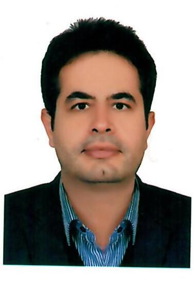 دکتر سید مجتبی موسوی نقابی